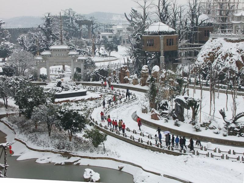 文博园雪景